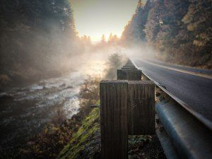 Morning fog is illuminated by the sunrise on an old country road.