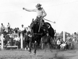 A cowboy rides a bucking horse in front of a crowd at a rodeo.