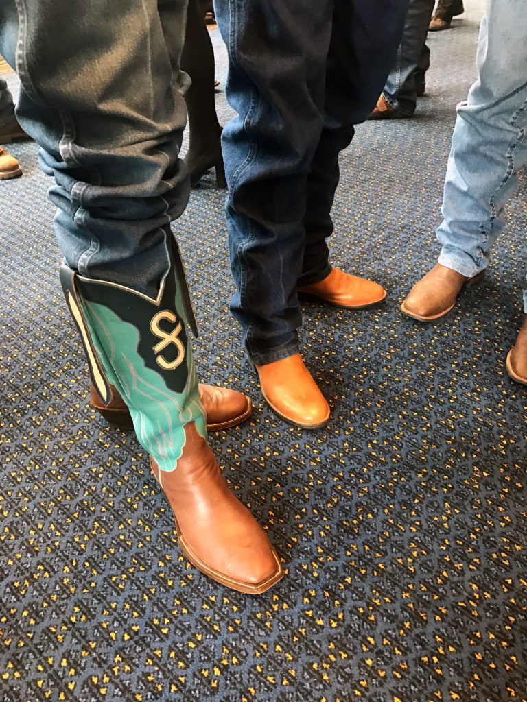 Colorful cowboy boots at Oregon Historical Society Event April 27, 2017